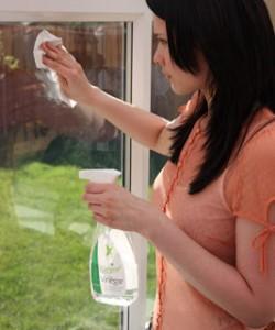 limpeza white-vinegar-windows
