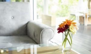 Afaste os problemas com mofo e umidade de sua casa.