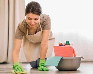 Fly lady: o novo sistema de limpeza da casa